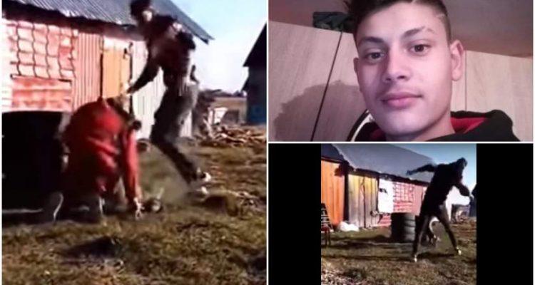 Adolescentă însărcinată bătută cu biciul în curtea casei, în Suceava(video)