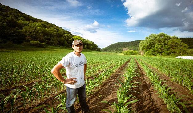 Sprijin pentru tinerii fermieri din diaspora. Tânărul Fermier 2021!