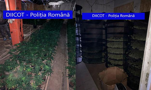 Ce afacere au dezvoltat după ce s-au stabilit în România, doi soți spanioli!